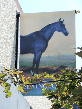 The blue horse is the symbol of the Lexington Convention and Visitors Bureau