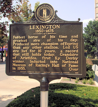 The Horse Named Lexington